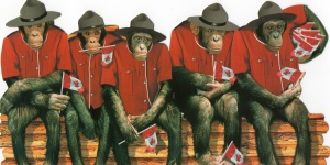RCMP monkeys