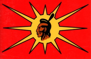 Warrior flag
