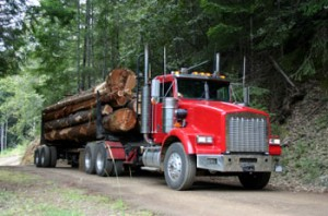 Tsilqhot'in logging truck