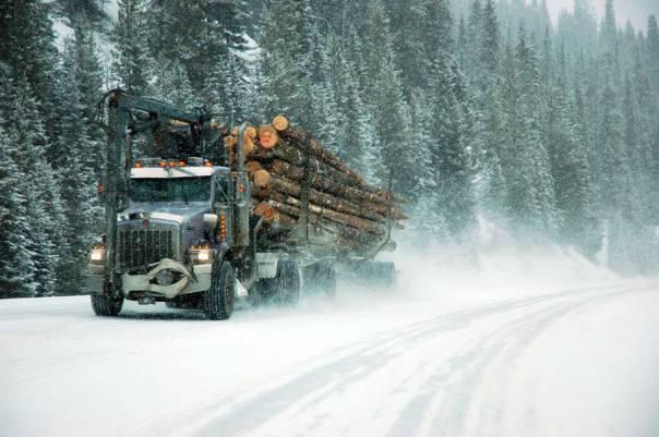 forestry logging truck winter