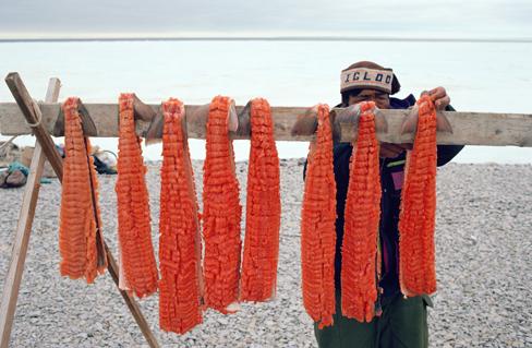 Wind drying salmon strips.