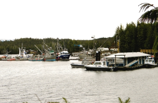 Three RCMP boats parked at docks in Bella Bella, 'BC.' as part of their operation against Heiltsuk, March 2014.