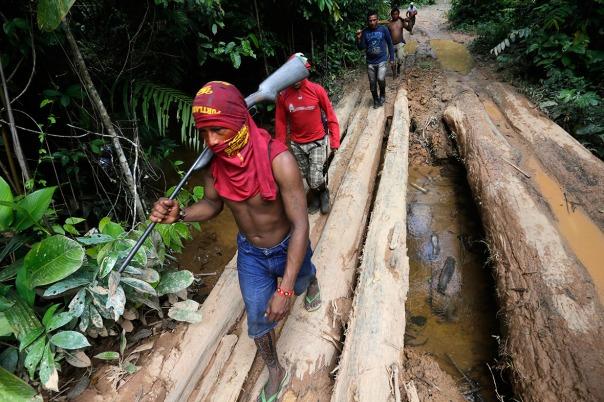 Amazon logging 3