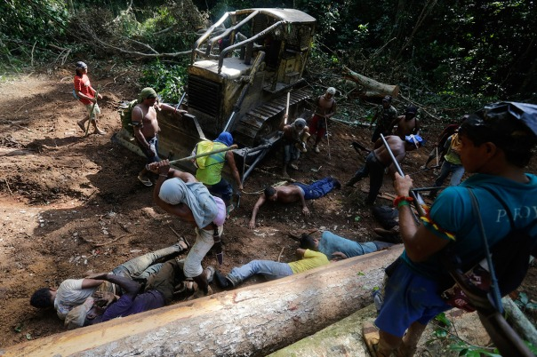 Amazon logging 5