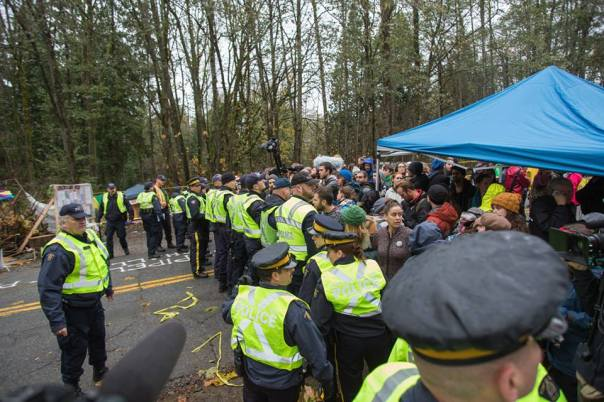 Crowd of protesters confront police on Burnaby Mountain, Nov 20, 2014.