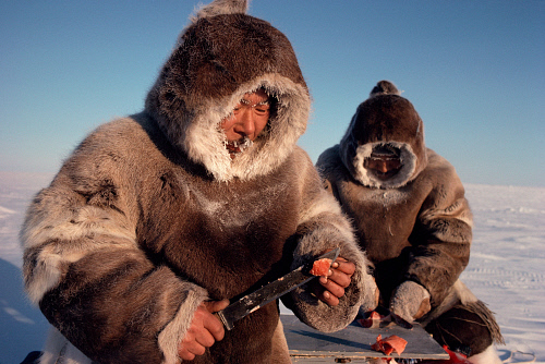 Inuit Caribou Skin 1