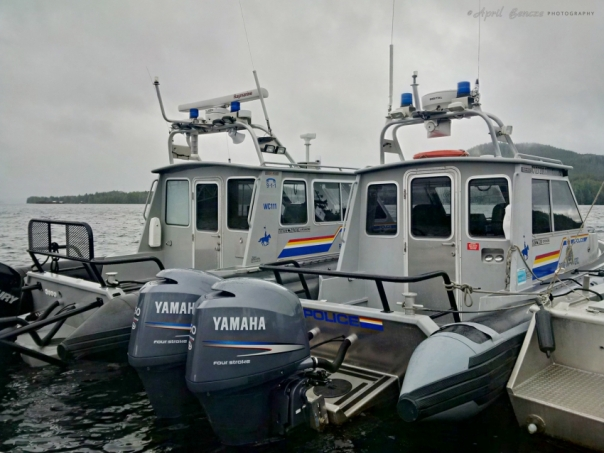 RCMP boats monitoring the herring commercial fishery in Bella Bella on the weekend.  Photo by Ian McAllister, Pacific Wild.