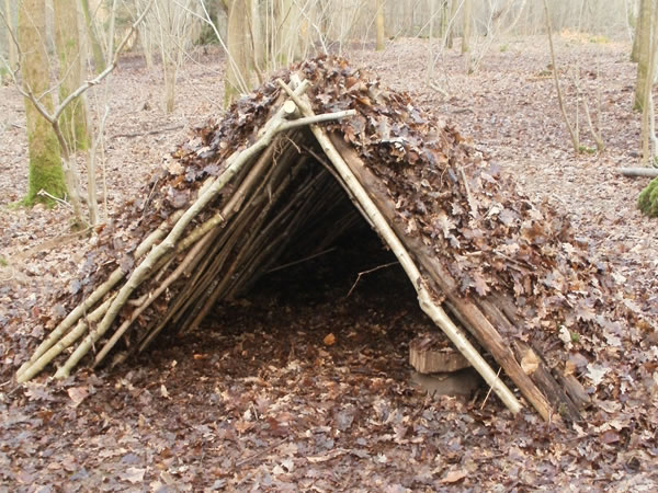 An example of a debris shelter made with branches and leaves.