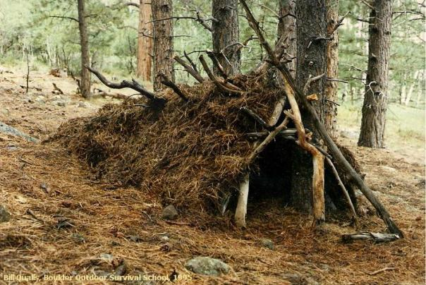 Another example of a debris shelter.