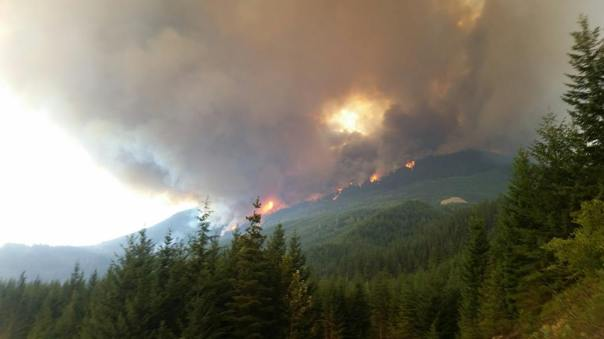 Forest fire burning near Pemberton, BC, July 5, 2015.