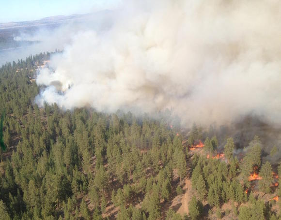 The County Line 2 Fire on the Warm Springs Indian Reservation in Oregon has burned 100 square miles, or 64,438 acres—and is the smallest of the fires plaguing Indian country in the Northwest at the moment. (Photo: Peter Mackwell/InciWeb)