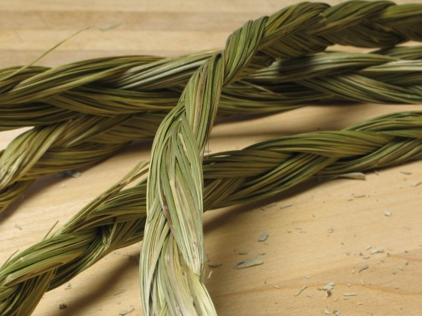 Braided Sweetgrass, an important traditional medicine for plains Indigenous peoples.