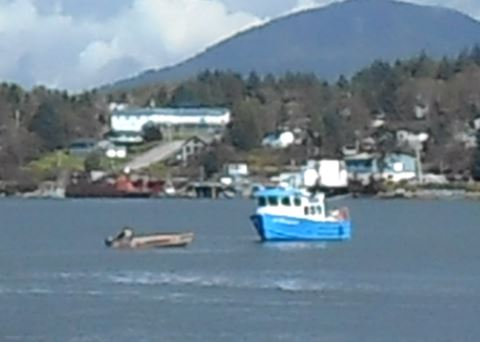 Lelu Island boats
