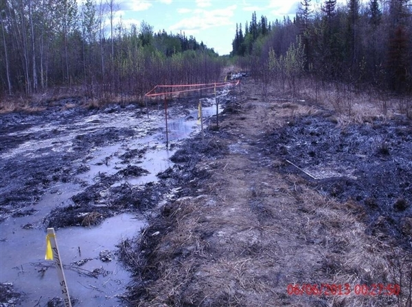 A section of the oil spill near Zama City, Alberta.