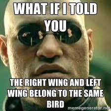Left Right Wing bird meme