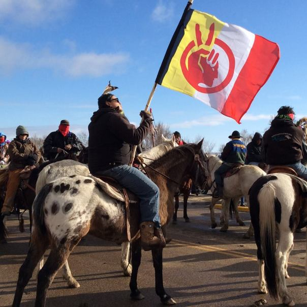 Dakota Access pipeline horses 1