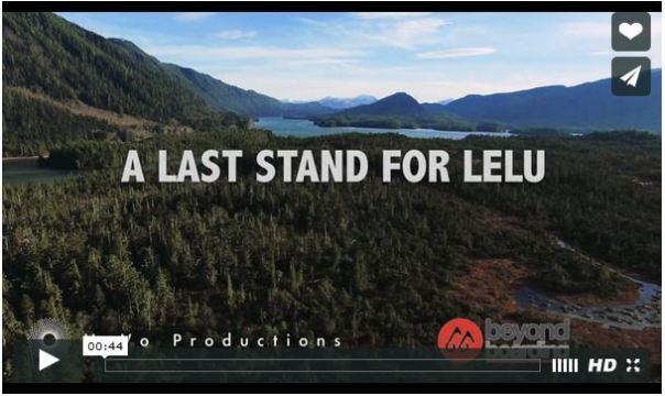 Lelu island video still