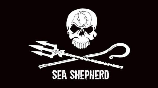 sea-shepherd-3