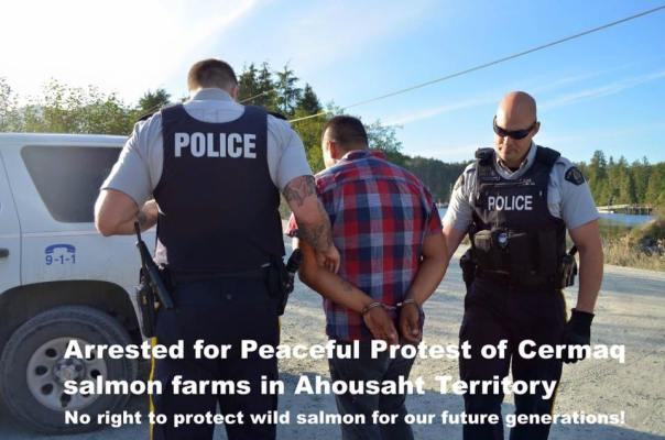 Ahousat fish farm arrest 1