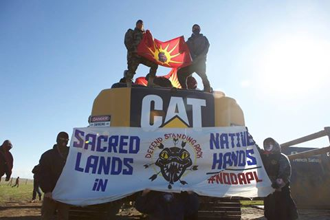 dakota-access-pipeline-warrior-flag-cat