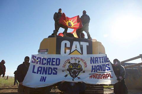 dakota-access-pipeline-warrior-flag-cat