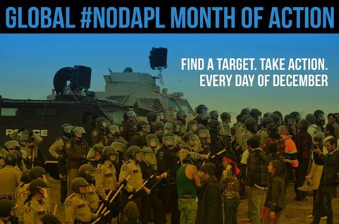 dapl-month-of-action
