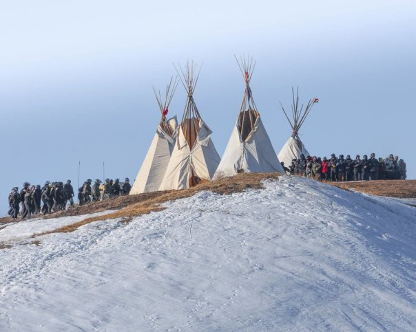 dapl-last-child-tipis-cops
