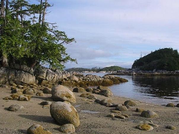 Heiltsuk triquet-island