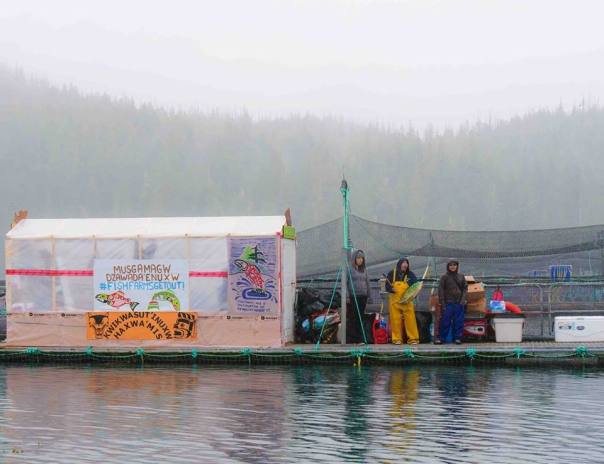fish farm occupation structures