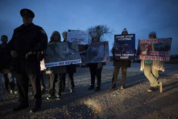 Six Nations hunt protesters