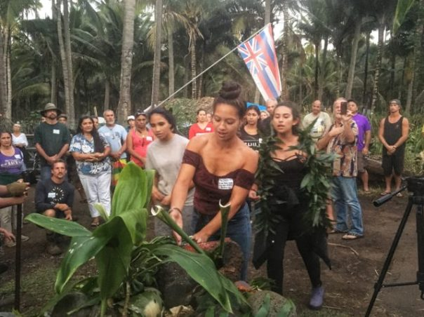 Hawaii Coco Palms occupation 2