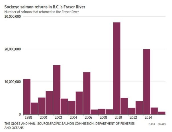 Salmon population 1998-2014